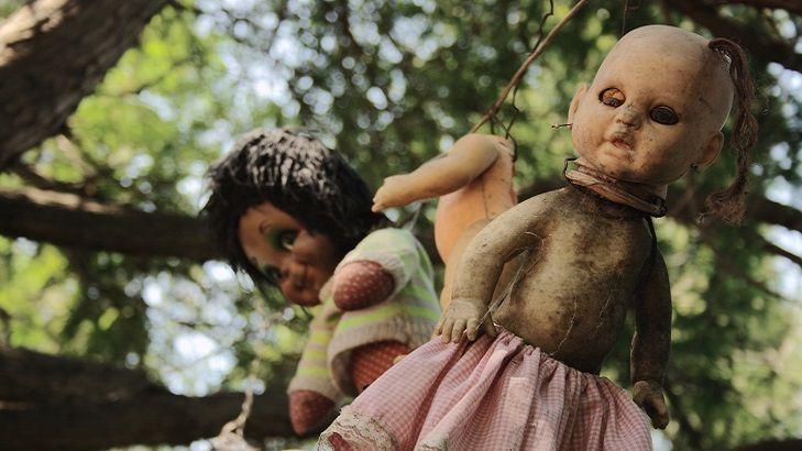 Isola delle bambole, Messico. Un posto abitato da inquietanti resti di bambole impiccate agli alberi. Solo per coraggiosi!.