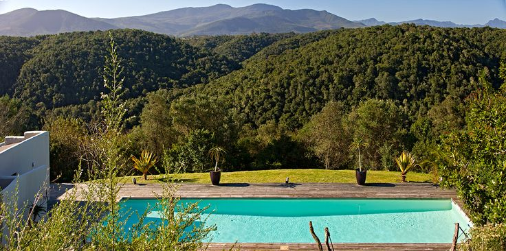 Admire the forest of Plettenberg Bay from the Hog Hollow Deck...