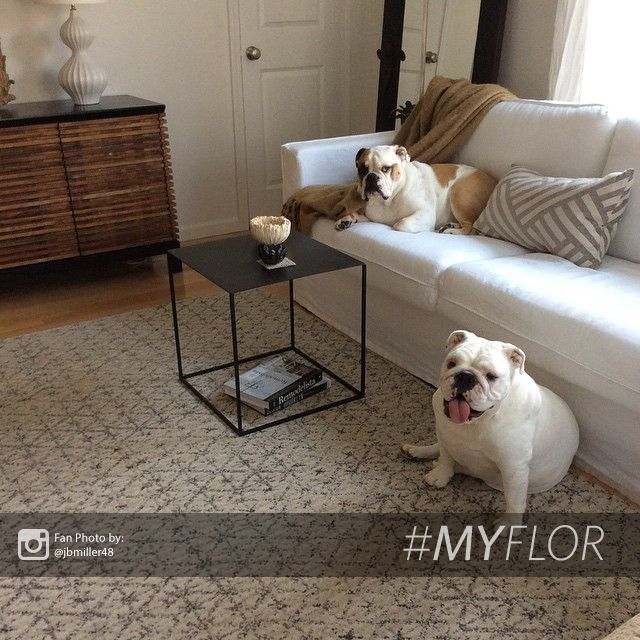 Dog Proof Throw Rugs: 184 Best #myFLOR Inspiration Images On Pinterest