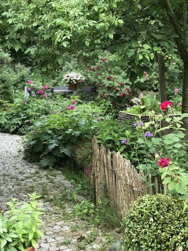 Sarah S Cottagegarten Villa Konig Garten Cottage Garten Garten Ideen