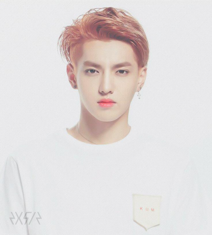 EXO Stardium Photocards Kris! cr: 2x5=12