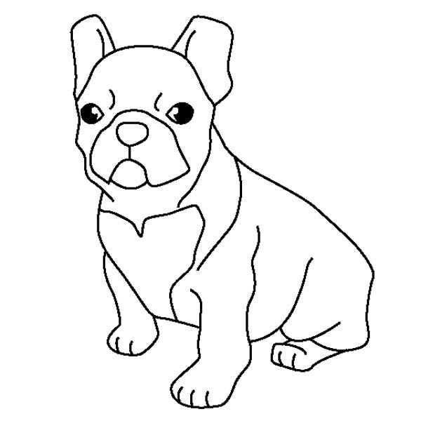 French Bulldog Coloring Page Coloring Sky In 2020 Dog Coloring Page French Bulldog Drawing Puppy Coloring Pages
