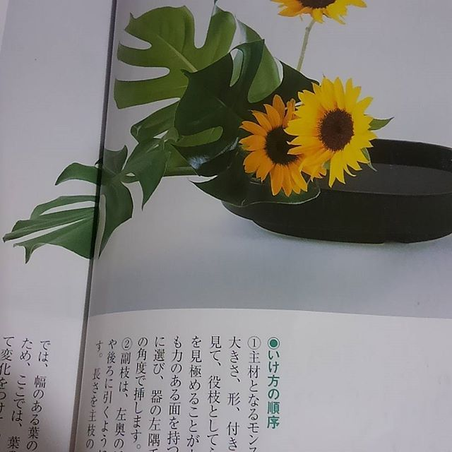 【kimonotoveya】さんのInstagramをピンしています。 《15:42 やっとお昼(*≧∀≦*) まったり。。 今月人数集まらなかったので、 来月お花のワークショップ予定してます☆ 皆さんで楽しむ時間は、諦めませんよ~( v^-゜)♪ #着物#kids#吉祥寺 #お稽古#着付けのお稽古#一緒 #お花見#桜#楽しい#休日#遊ぶ#学ぶ #女性限定#お着物#嬉しい#ありがとう #お正月#ランチ#ママ友 #七緒#東京#ネイル#インスタ#インスタデイリー#幸せ#幸せな時間#たのしい#嬉しい》