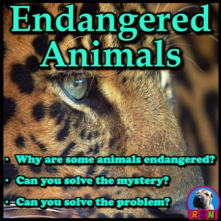 Endangered Animals PowerPoint: Interesting and fun facts all about endangered animals. Learn about these threatened animals in this nonfiction resource for teachers, students, and parents! More than just a series of informative slides, this educational package also contains higher level thinking activities, riddles, and lessons designed to hone problem solving skills. Ryan Nygren (photo by Art G. @ http://www.flickr.com/photos/digitalart/