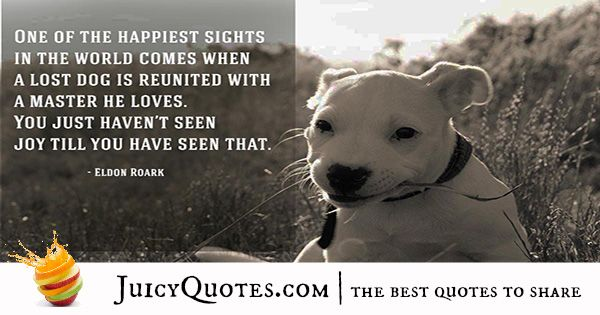 Quotes About Dogs - 5