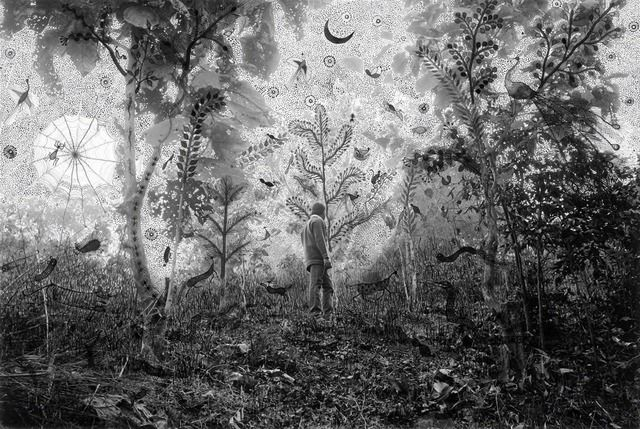 """Gauri Gill and Rajesh Vangad, Moonlight in the Forest, from """"Fields of Sight"""", 2014, ink on archival pigment print, © Gauri Gill and Rajesh Vangad, courtesy the artists."""
