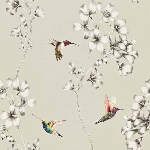 Amazilia (111062) - Harlequin Wallpapers - A beautiful design of etched trailing flowers with vivid coloured amazilia hummingbirds. Shown here in metallic silver, grey and pretty multicoloured birds. Other colour ways available. Paste the wall product. Wide width roll. Please request a sample for true colour match.
