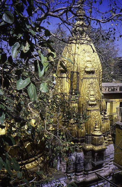 Kashi Viswanath Temple