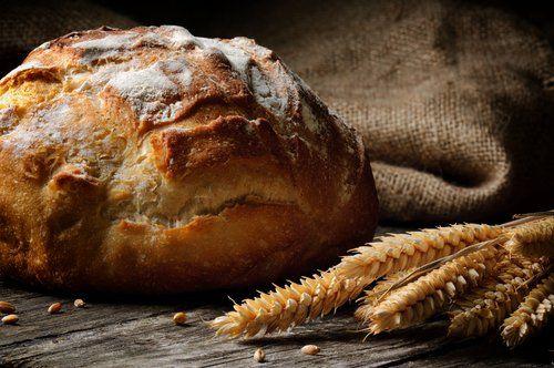 Pan de la amistad o pan amish