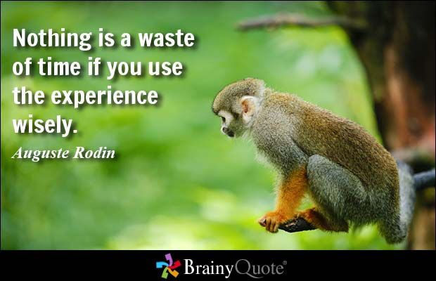 Nothing is a waste of time if you use the experience wisely. - Auguste Rodin #brainyquote #QOTD #experience