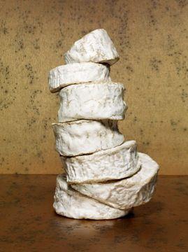 Povera. Chaource sur camembert sur chaource sur brillat-savarin. (c) Jean-Jacques Pallot