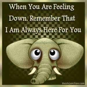 ccde3202346ada305074b284d8de9869 40 best most funniest elephant quotes images on pinterest elephant