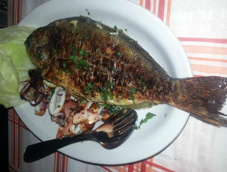 Bar Ristorante Dietro il Carcere, Alghero - Restaurant Avis, Numéro de Téléphone & Photos - TripAdvisor