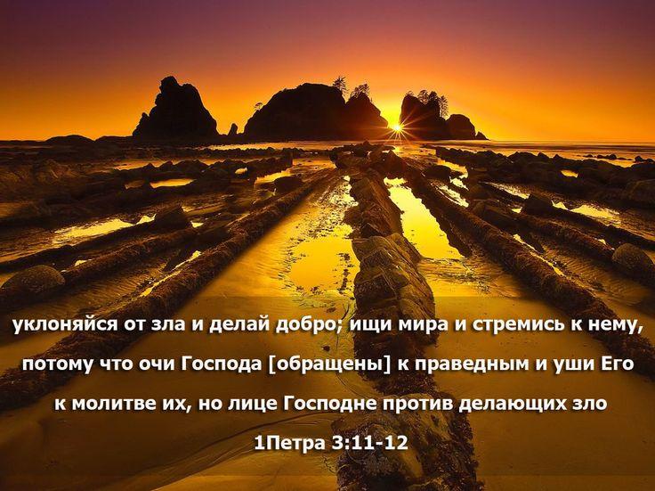 уклоняйся от зла и делай добро; ищи мира и стремись к нему, потому что очи Господа [обращены] к праведным и уши Его к молитве их, но лице Господне против делающих зло 1Петра 3:11-12