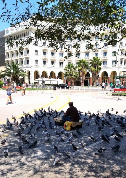 Pigeons at Aristotle Square