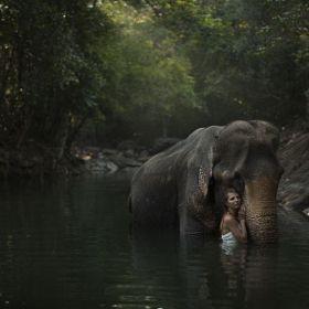 Best Surrealism Photographer Katerina Plotnikova Images On - Russian photographer takes enchanting fairytale photos featuring wild animals