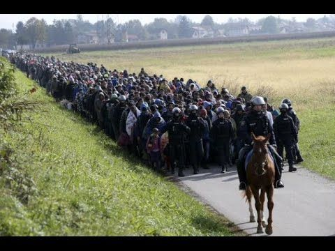 Na skutek działań Angeli Merkel Niemcy znajdują się na skraju wojny domowej