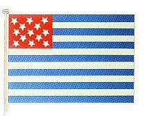 Ft Mercer Flag