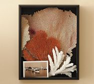 Best 25 Beach Shadow Boxes Ideas On Pinterest Pictures