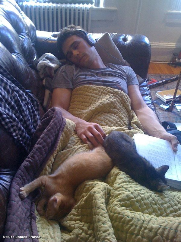 28 Ridiculously Hot Celebrities With Incredibly Cute Cats. Wish my cats slept like that with me.