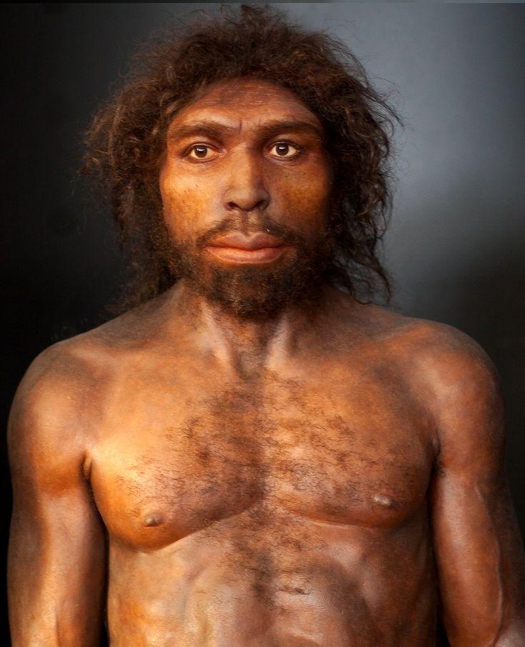 Homo rhodesiensis es una especie de homínido, se considera que vivió solamente en África, desde hace 600 000 hasta 160 000 años antes del presente.La capacidad neurocraneal del Homo rhodesiensis era relativamente alta, entre 1280 y 1325 cm³.del Homo Rhodesiensis superaría los 180 cm.