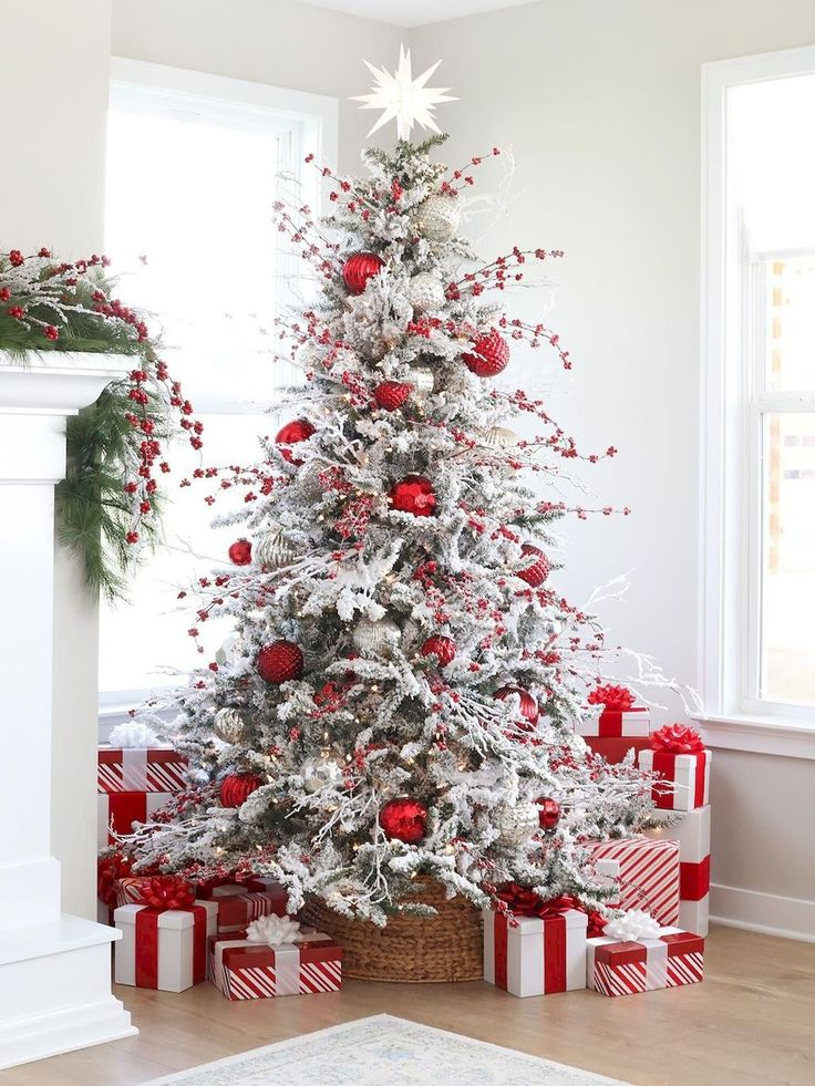A rapidly crumbling Christmas tree is well the most
