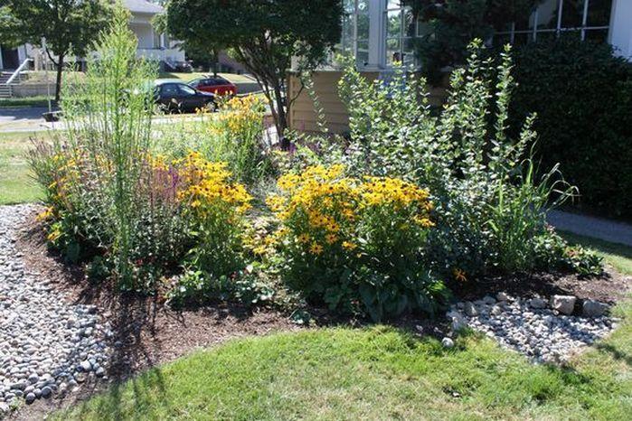 Rain Garden Design Landscaping Front Yards_10