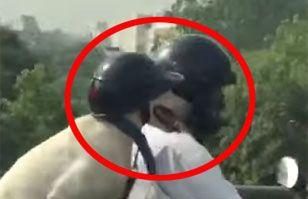 Video: increíble perro motoquero circula por las calles de India con casco | Cultura India