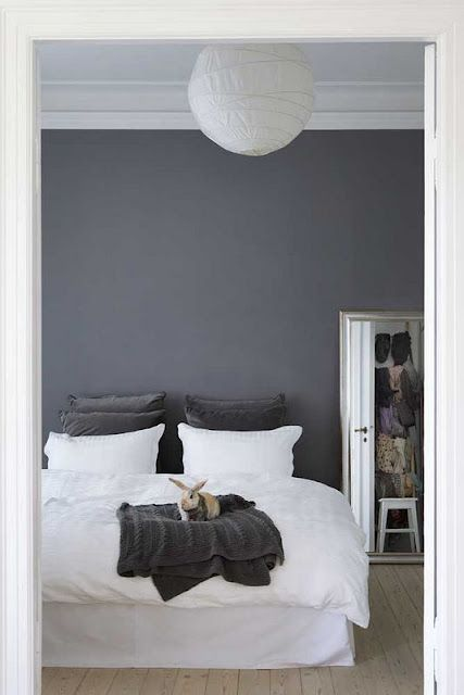 Love the blue/gray wall