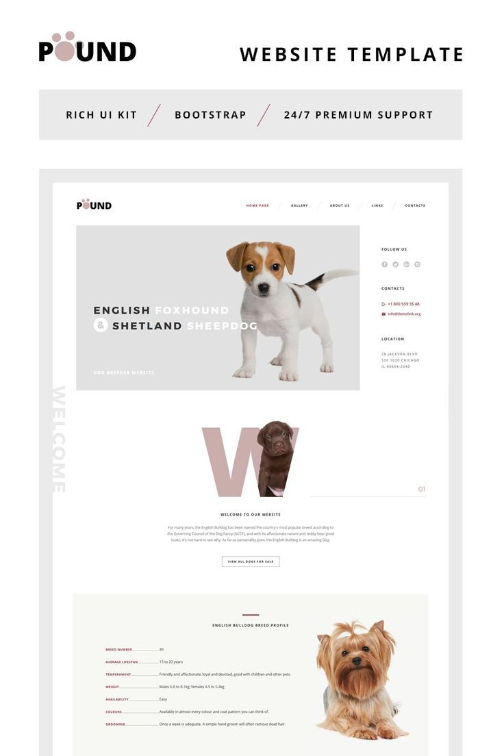 Animal Shelter Website Dogs In 2020 Website Template Pet Websites Responsive Website Template