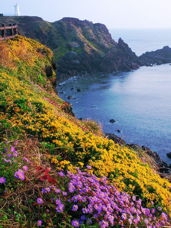 韓国 チェジュ島の風景(Jeju Island, South Korea)