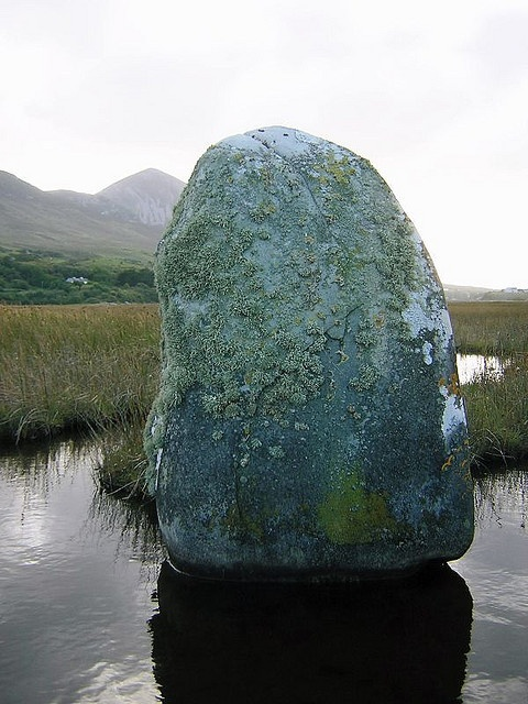 Standing Stone in salt marsh, Co. Mayo, Ireland