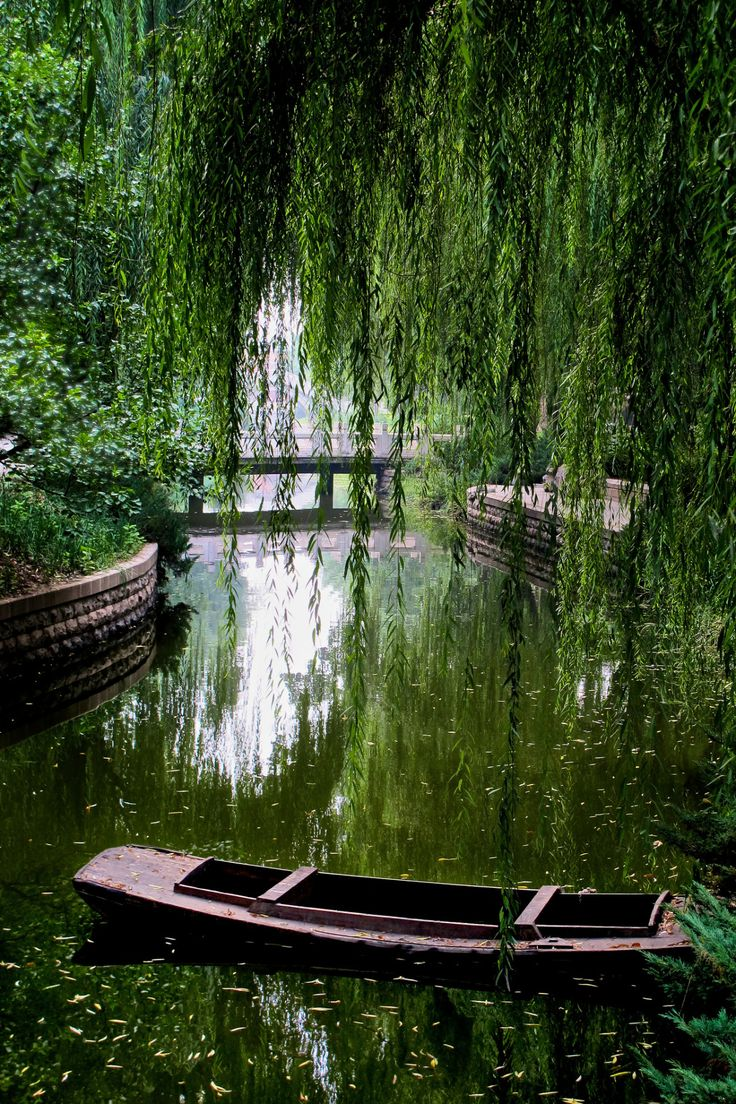 Lazy Afternoons in a Punt, on a Lake, beneath a Weeping Willow Tree ...