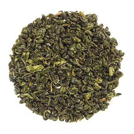 green tea camelia sinensis