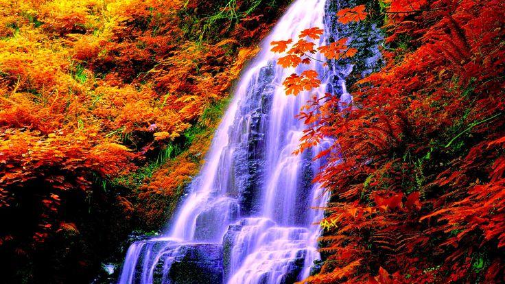 cascada-toamna.jpg (1600×900)