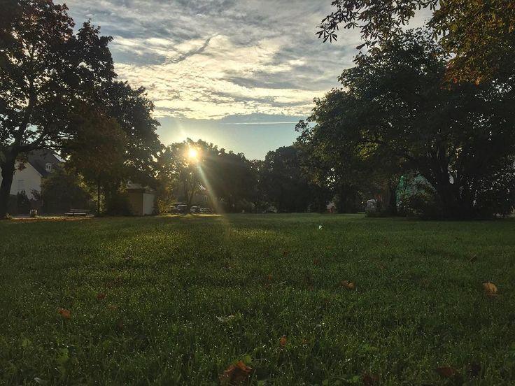 Guten Morgen guten Morgen guten Morgen Sonnenschein...     #trudering #munich #bigcitylife #citylife
