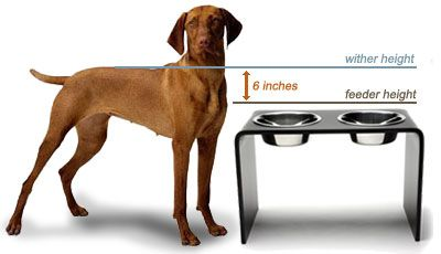 Build your own elevated dog bowl at proper height with these easy instructions