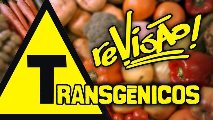 O que são os transgênicos? | Biologia