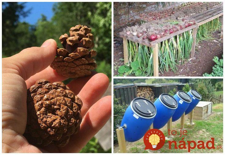 Cas vysádzania priesad a semienok do pôdy v našich záhradách sa práve začal. Ak však chcete, aby vaše rastlinky rástli do sily a nakoniec priniesli bohatú úrodu, musíte sa pripraviť na vrtochy počasia, ktoré môžu