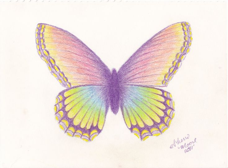 Pencil Drawing For Butterfly Images 18+ Butterfly Drawings, Art Ideas | Design Trends – Premium Psd