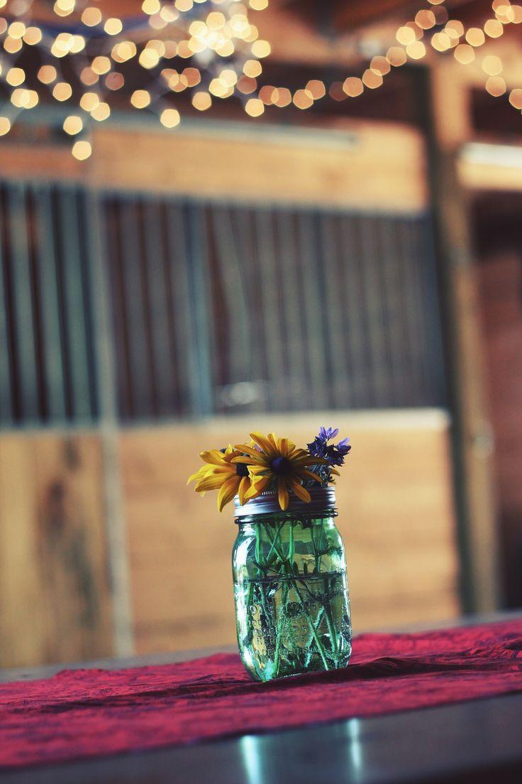 Photo by Autumn Mott | Unsplash