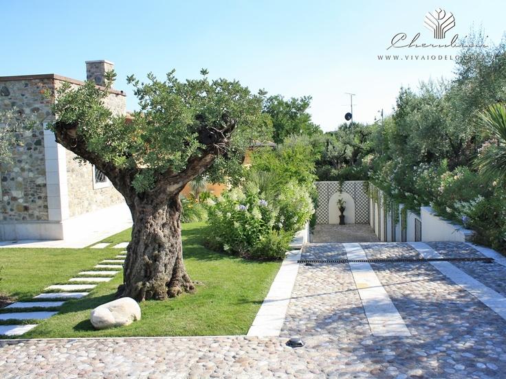 Copyright © www.vivaiodelgarda.it  Il Giardino Terapeutico - Per il benessere del corpo e della mente