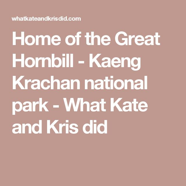 Home of the Great Hornbill - Kaeng Krachan national park - What Kate and Kris did