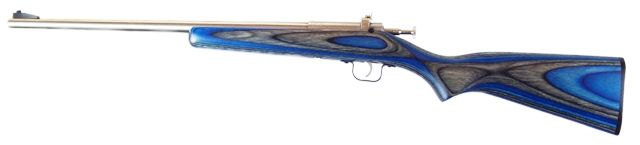 Crickett Rifle Single Shot Youth Model (~$150) many stock options shown here in snazzy blue laminate