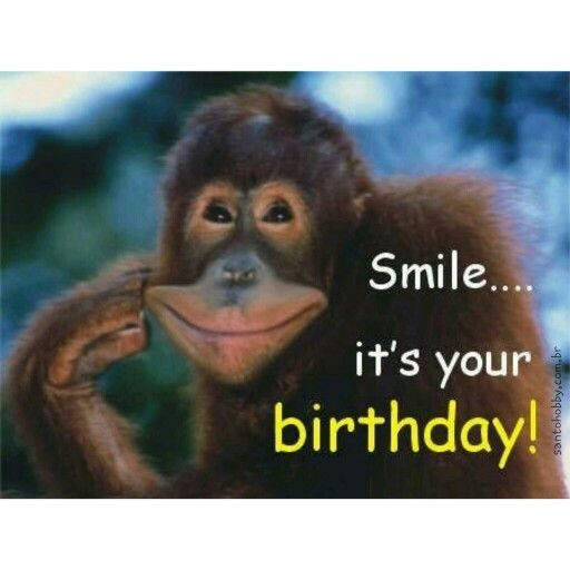 Sorria, é seu aniversário! :) #felizaniversário #happybirthday #parabéns #sorria #frases #pensamentos #santohobby