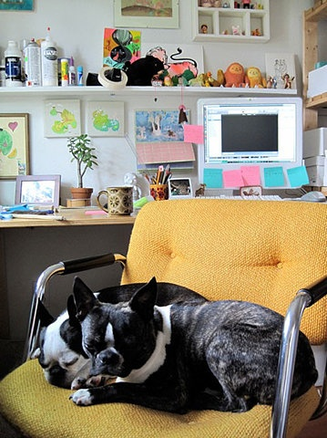 Studies have shown that canine office companions can significantly reduce stress, and potentially increase productivity.    http://www.usatoday.com/money/workplace/story/2012-02-11/dogs-in-workplace/53031798/1
