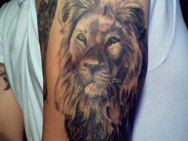 Best 25 lion head tattoos ideas on pinterest lion head for Aztec lion tattoo meaning
