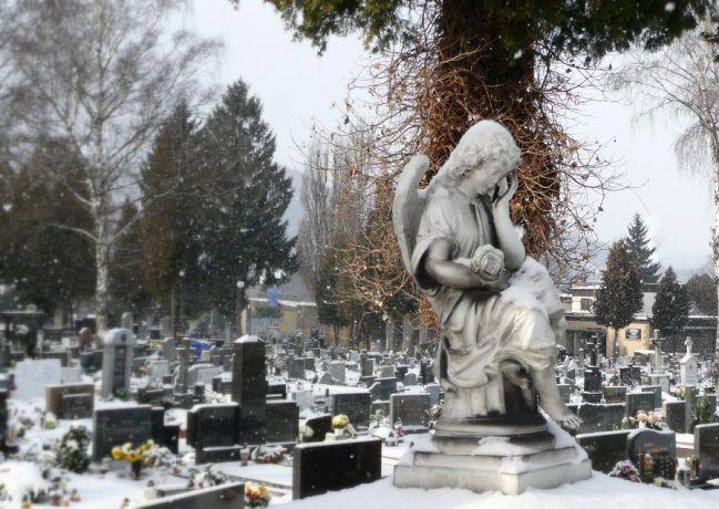 V chápadlách smrti (Žilina)