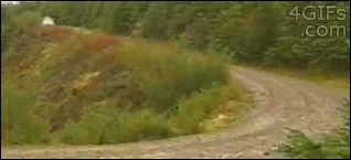 marko martin wrc focus rally car gravel drift animated GIF