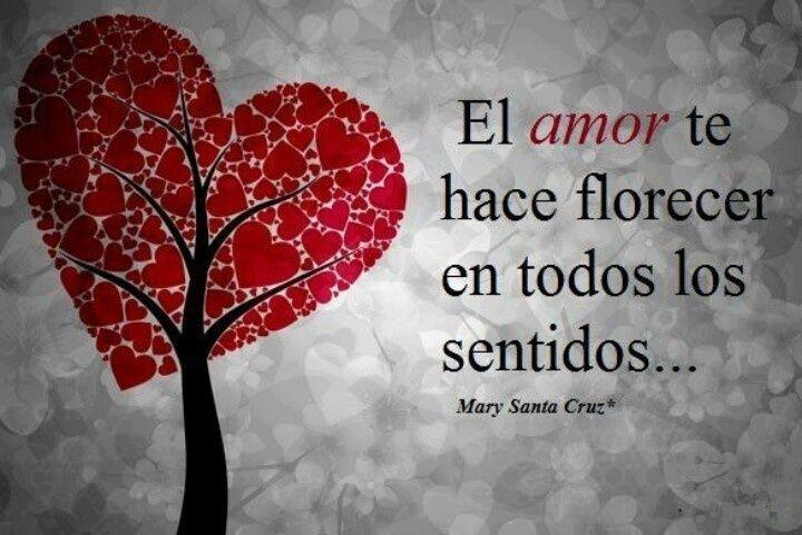 70 Frases De Amor Memorables: 17+ Images About Frases De Amor Para Tarjetas Memorables